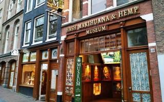 Обзор музея конопли и других лучших галерей Амстердама