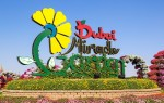 Описание Парка Цветов в Дубае