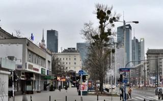 Районы Варшавы: Воля