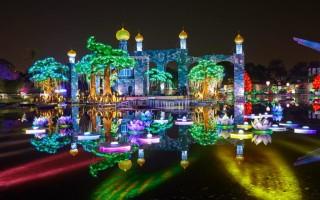 Светящийся сад в Дубае (dubai garden glow)