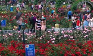 Обзор парков Сеула — Грандпарка, Эверленда, Лоттеворлда, Олимпийского