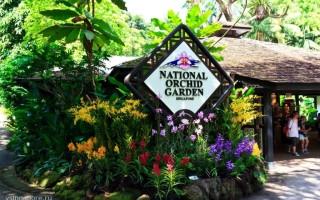 Сингапурский Ботанический сад и Национальный парк орхидей