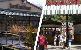 Обзор Юнибакен и Скансен — популярных музеев Стокгольма