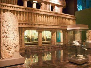 Выставка антропологии