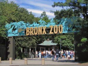 Зоопарк Бронкс