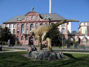 Музей естественных наук