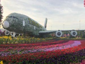 Цветочный самолет