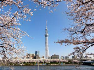 «Токийское небесное дерево» – это телевизионная радиобашня высотой 634 метра
