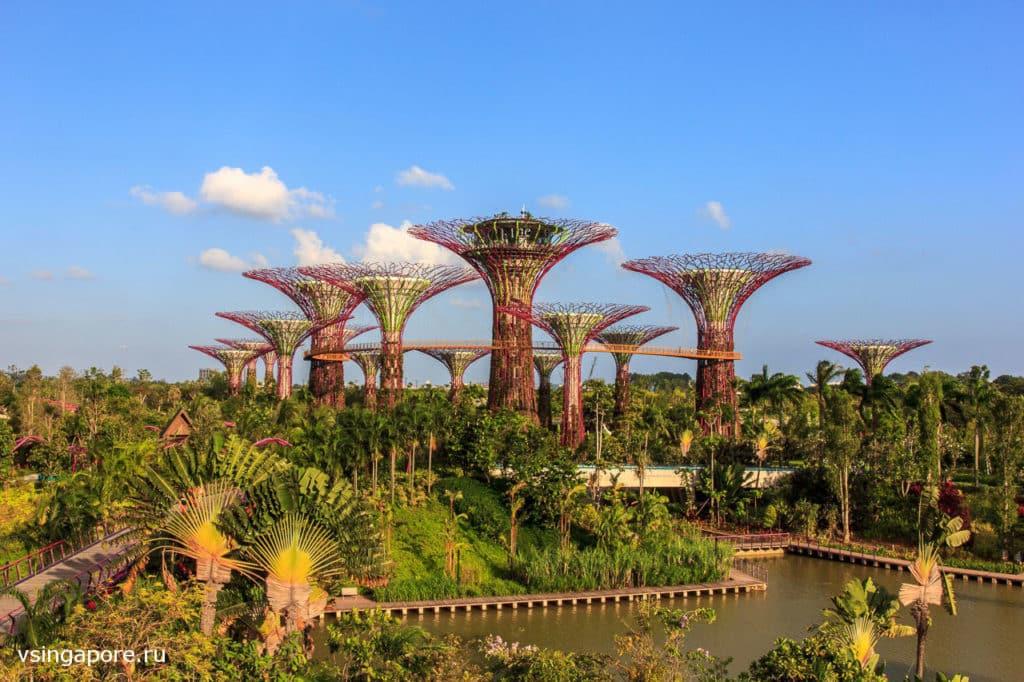 Сингапур туризм достопримечательности как добраться -