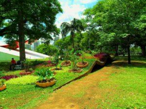 Парк цветов и клубники