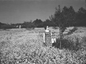 Поклонная гора 1960 годы