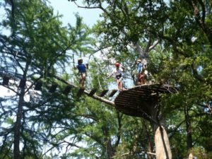 Tree Top Adventures