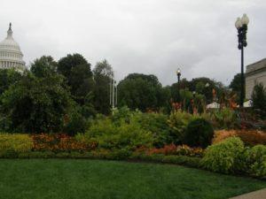 Ботанический сад США