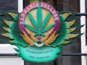 Cannabis College