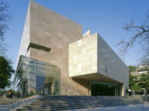 Коллекция латиноамериканского искусства