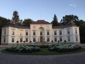 Мыслевицкая резиденция короля