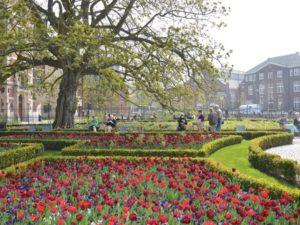 Rijksmuseum's gardens